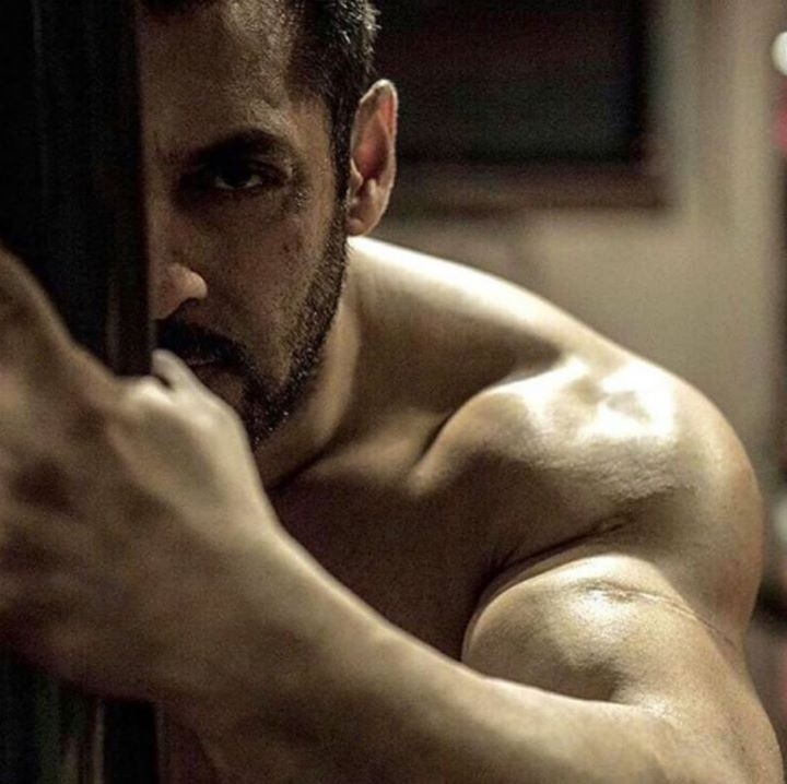 Sultan Ali Khan - From the movie Sultan