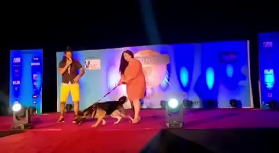 Make Way For the King !  Thank you Dog Fest India, and Chirag Bhatt for such amazing moments in Ahmedabad.  Such a beautifully executed event.  Lots of Love. #gsd #dogsofinstagram