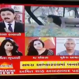 Was LIVE on ABP Asmita's Mahacharcha over Creation of No Selfie Zones in 20000 sq km area at Gir Forest and Nearby for the Betterment of Asiatic Lions Gujarat